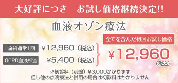血液クレンジング初回お試しが、¥12,960円(税込)